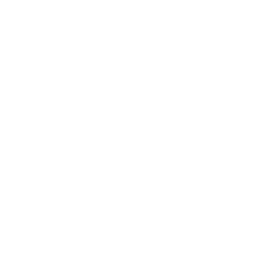 Custom Display